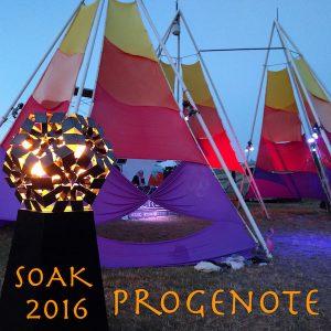 soak2016-600